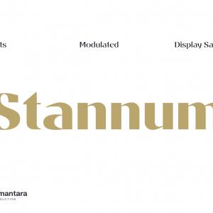 Stannum-(Creative-Market)-1